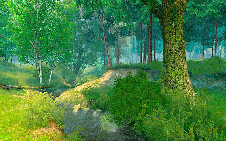 Summer Forest 3d Screensaver Download Animated 3d