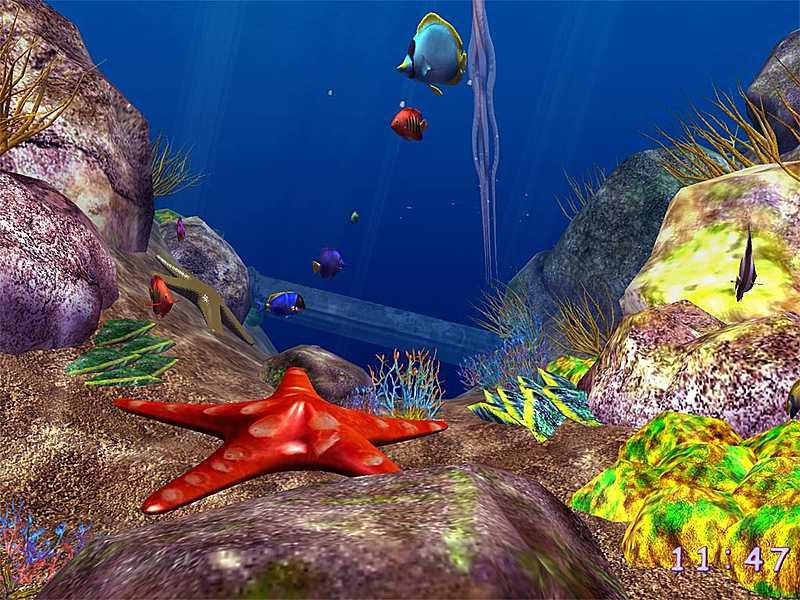 Ocean fish 3d screensaver download animated 3d screensaver for Moving fish screensaver