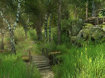 Forest Walk 3D Screensaver
