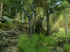 Forest Walk 3D: View larger screenshot
