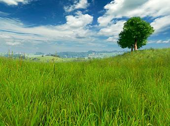 Grassland 3D Screensaver
