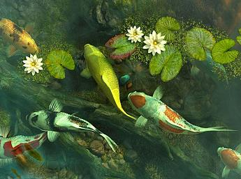 Koi pond garden 3d screensaver download animated 3d for Koi pond screensaver