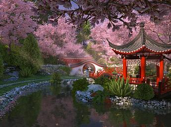 Sakura Garden 3D Screensaver