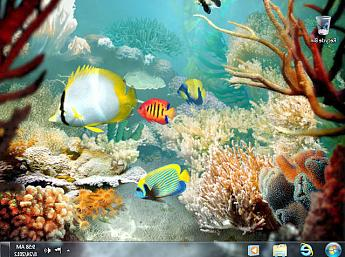 Tropical Fish 3D Bildschirmschoner